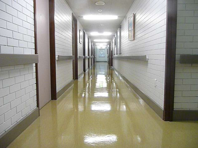Commercial Cleaning Scarborough, Office Cleaning Margate, Vinyl Floor Sealing Woody Point, Stripping & Sealing Clontarf, Medical Centre Cleaning Kippa-Ring, Cleaning Services Redcliffe